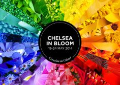 #Brand concept and communications to support a #London event.  Chelsea in Bloom is a complimentary event to the world famous RHS Chelsea Flower Show. The annual competition heats up year-on-year and this year's brand story of 'Creation in Colour', tells of a kaleidoscopic floral journey through fashion, food and lifestyle.  Read more here: http://www.underscore.co.uk/our-work/chelsea-in-bloom-2014/  #graphicdesign #London #chelseainbloom #colour #campaign #marketing #digitalmarketing #design