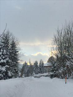 Snow, Outdoor, Outdoors, Outdoor Living, Garden, Eyes