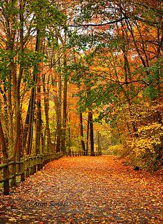 Wissahickon trail, Fairmount Park, Philadelphia, PA