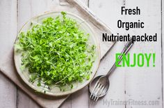 Awesome article from @mercola on the many #Health benefits of# sprouts. Do you like sprouts? Have you tried growing them? Let us know in the comments!   http://mytrainerfitness.com/growing-sprouts-dr-mercola/