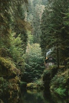 10 Reasons Why You Need Your Own Cabin In The Woods – Frugal Blossom All Nature, Nature Source, House Nature, Amazing Nature, Parc National, National Parks, Cabins In The Woods, Cottage In The Woods, Belle Photo