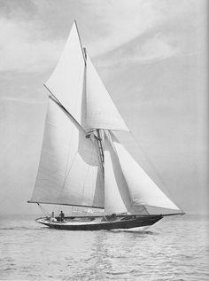 """""""Pen Duick"""". La petite mésange à tête noire. When Sailing Was Simple"""