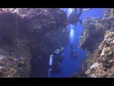 Scuba Diving in Cozumel - Palancar Garden Reef TUNNELS