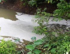 Bộ TN-MT sờ gáy hai doanh nghiệp bức tử môi trường tại tỉnh Phú Thọ   Tổng cục Môi trường vừa có kết luận về công tác bảo vệ môi trường và quyết định xử phạt đối với hai DN đóng trên địa bàn TP Việt Trì tỉnh Phú Thọ có hành vi xả nước thải vượt gấp nhiều lần tiêu chuẩn cho phép gây ô nhiễm môi trường. Cụ thể Cty CP Giấy Việt Trì bị phạt gần 400 triệu đồng và Cty Pangrim Neotex bị phạt gần 500 triệu đồng bởi hành vi xả nước thải chưa đạt quy chuẩn kỹ thuật ra môi trường.  Phạt Cty CP Giấy…