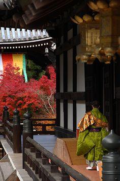 komyo-ji temple / kyoto / photo: 92san
