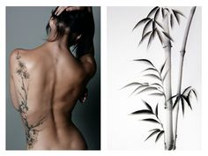 Mila, this is your canvas for my bamboo tattoo. Same side of body (left). And I want it creeping up the back of my shoulder in this exact way.