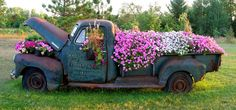Old Chevy Truck as a Flower Bed. This is beautiful!