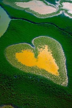 Yann Arthus-Bertrand Heart in Voh, New Caledonia - France in the Pacific Ocean Get Informed with… Heart In Nature, All Nature, Heart Art, Amazing Nature, World's Most Beautiful, Beautiful World, Beautiful Places, Images Lindas, Mother Earth