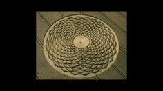 Flower Of #Life Crop Circle Sacred Geometry - YouTube