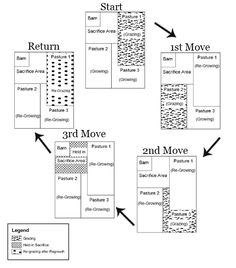 Pasture Rotation plans, from myhorseuniversity.com