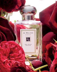 Shop Red Roses Cologne by Jo Malone London at Sephora. This romantic fragrance features notes of lemon, red roses, and honeycomb. Perfume Scents, Perfume Bottles, Rose Perfume, Dior Perfume, Dolce E Gabbana, Jo Malone, Perfume Collection, Smell Good, Red Roses