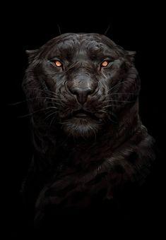 Panther by Maria Zolotukhina on ArtStation Lion Wallpaper, Animal Wallpaper, Big Cats Art, Cat Art, Fantasy Creatures, Mythical Creatures, Panther Cat, Lion Art, Dark Fantasy Art