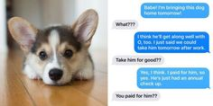 """Here's What Happened When 8 Women Texted Their Partners Photos of Puppies They """"Adopted"""" - Cosmopolitan.com"""