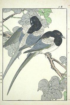 Keinen Kacho Gafu Woodblock Prints 1891