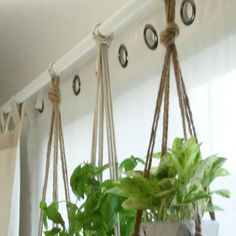 All Details You Need to Know About Home Decoration - Modern Rope Plant Hanger, Macrame Plant Hangers, Diy Projects For Beginners, Macrame Projects, Plant Holders, Hanging Plants, Pots, Wedding Signs, Wedding Reception