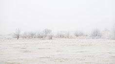 #IJburg #Winter #Wonderland