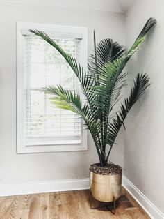 Home Design And Decor Ideas And Inspiration - Floor Plants - Ideas of Floor Plants - Gold flower pot. Tall Indoor Plants, Indoor Palms, Indoor Trees, Indoor Plant Pots, Indoor Flower Pots, Flower Plants, Pots For Plants, Home Flowers, Diy Flower