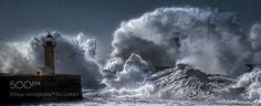 Worse.things.happen@sea II by edtsousa via http://ift.tt/2ieZrRH