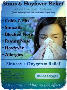 Sinus & Hayfever flier