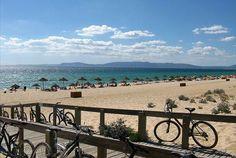 Dias de descanso no paraíso. No Comporta Village, a dois passos da praia do Carvalhal, Tróia e Melides, 5 noites de alojamento em T1 superior para 2 adultos + 1 criança por 439€. - Descontos Lifecooler