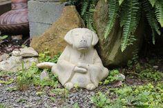 Buddha Dog~<3~