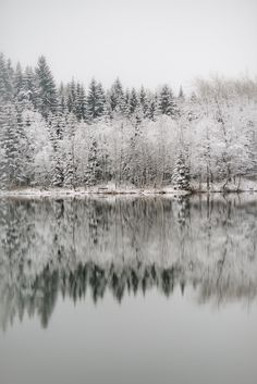 A light dusting of snow. #lake #winter