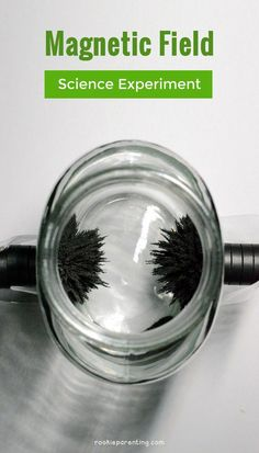 Create a magnetic field using iron filings - fun science experiment to see magnetic force. Science Projects For Kids, Cool Science Experiments, Stem Science, Preschool Science, Physical Science, Science For Kids, Magnets Science, Science Labs, Science Party