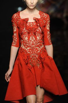 Yiqing Yin Fall 2012 - Details ---- holy mother of...découpage...