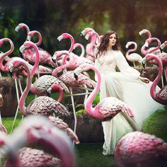 pink mist - null