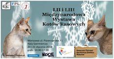 Styczniowa wystawa kotów rasowych w Warszawie