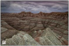 This gem is a small fraction into the beauty of Badlands National Park. It rained off and on while we were there which made the red and yellow layers o... - Rob Daugherty (RobsWildlifeLLC) - Google+