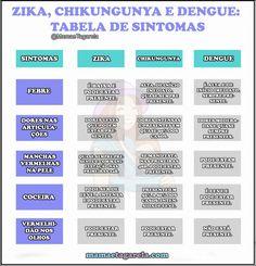 Zika virus e gravidez