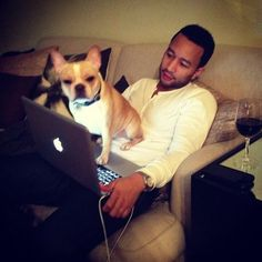 Cool 29 Incredible Celebrity Dog Fathers