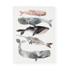 Five Whales Wall Art
