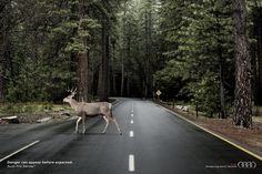Print Moose for Audi by AlmapBBDO