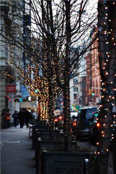 Adoro NY e adoro i fili di luci sugli alberi ...  Rendono tutto più magico ! White Christmas - I love NY and Xmas lights!