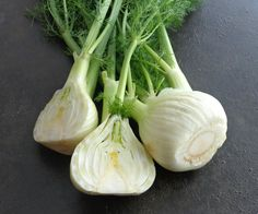 Sweet Florence Fennel-Finocchio- Herbs Seeds - 100 Finest Seeds