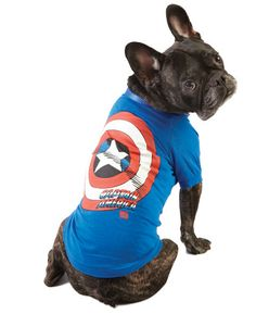 Petsmart dog toy | Giveaway – Pet Celebration Week – Petsmart Marvel Dog Tee