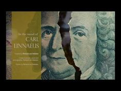 A film about Carl Linnaeus | Natural History Museum - YouTube