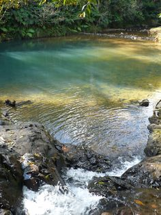 Discover the Charco Azul Natural Pool in Cayey, Puerto Rico: The water is always very cold even in summertime.