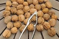 Cracking Walnuts for christmas