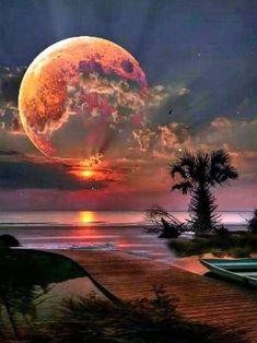 Beautiful Nature Wallpaper, Beautiful Sunset, Beautiful Landscapes, Beautiful Nature Photography, Amazing Photography, Moon Photography, Landscape Photography, Photography Reflector, Moonlight Photography