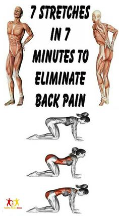 7 Stretch Exercises For Lower Back Pain Relief
