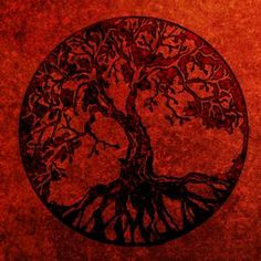 Inward and outward growth