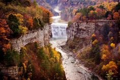 Letchworth State Park (by sandrajkammerer) Beautiful World, Beautiful Places, Places To Travel, Places To Go, Letchworth State Park, Natural Scenery, State Parks, Places Ive Been, The Good Place