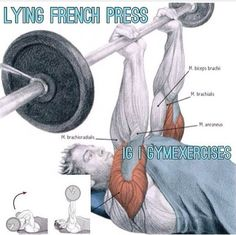 Lie face up on a bench, placing your feet on the floor if the bench is low, or on a step. Hold the bar in an overhand grip (palms facing up) above eye level with your elbows straight. Lower the bar by bending your elbows Bench Press Workout, Chest Muscles, French Press, Biceps, Exercise, Bending, Palms, Floor, Shape