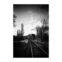 #way #railway #tree #road #landscape #sky #LaRochelle #bw #blackandwhite #lomolca #analog #35mm #ishootfilm #filmisnotdead #filmphotography #believeinfilm #lomo #argentique #lomography #kodak_photo #liveauthentic #livefolk