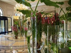 An orchestra of orchids by Jeff Leatham at the George V Paris