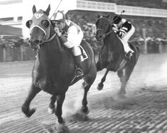 War Admiral Seabiscuit 1938 Horse Race Racing 8x10 Photo Photograph Print | eBay