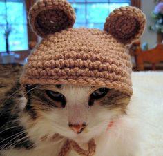 Crochet Cat Hat Bear Hat Pet Costume Halloween Photo Prop Brown. $16.00, via Etsy.